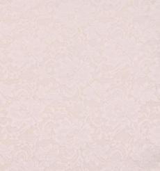 期货  蕾丝 针织 低弹 染色 连衣裙 短裙 套装 女装 春秋 61212-71