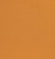 素色 梭織 染色 75D四面彈 連衣裙 襯衫 褲子 薄 柔軟 細膩 夏 全滌 70815-2