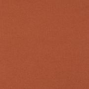TR平纹布 素色 圆机 针织 染色 低弹 外套 裤子 西装 细腻 无光 女装 童装 春秋 61116-18