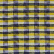 格子 喷气 梭织 色织 提花 连衣裙 衬衫 短裙 外套 短裤 裤子 春秋 期货 60401-17