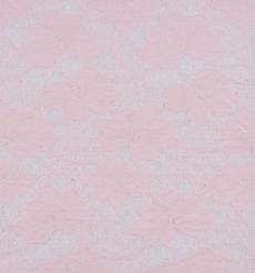 期货  蕾丝 针织 低弹 染色 连衣裙 短裙 套装 女装 春秋 61212-72
