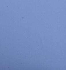 梭織 無彈 色織 全滌 雪紡 薄 柔軟 連衣裙 襯衫 70305-53