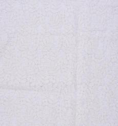 期货  蕾丝 针织 低弹 染色 连衣裙 短裙 套装 女装 春秋 61212-100