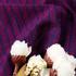 针织 棉感 低弹 纬弹 提花 纬编 平纹 细腻 柔软 上衣 男装 春秋 70825-17