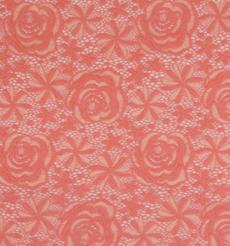 期货  蕾丝 针织 低弹 染色 连衣裙 短裙 套装 女装 春秋 61212-119