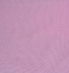 期貨 網布 素色 針織 染色 高彈 連衣裙 外套 柔軟 春秋 女裝 61219-23