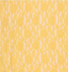 期货  蕾丝 针织 低弹 染色 连衣裙 短裙 套装 女装 春秋 61212-151