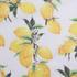 燕窝丝 柠檬 梭织 印花 无弹 衬衫 连衣裙 薄 春夏 女装 71227-11